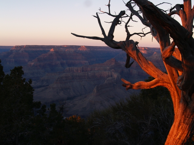 Last bit of fading light on our final evening in The Canyon